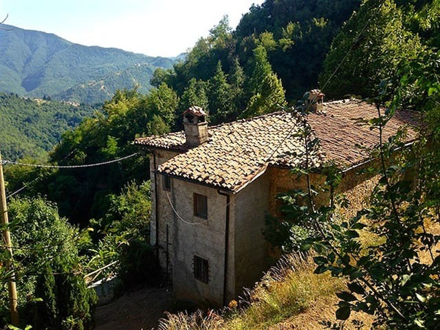 'Truly Tuscan' Villa with the Apuan Alps view - Castelnuovo di Garfagnana - Penzion (B&B)