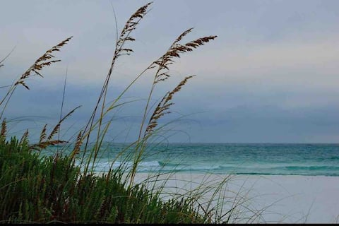 Seaside Serenity/Steps to the Gulf