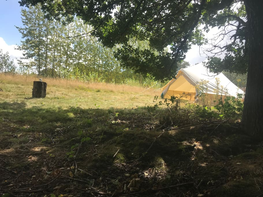 View of spacious 5 metre bell tent and field