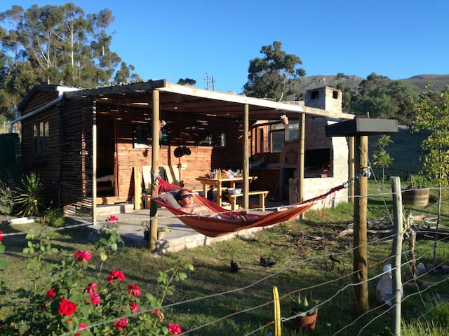 Front view, hammock, braai area and pizza oven on the terrace