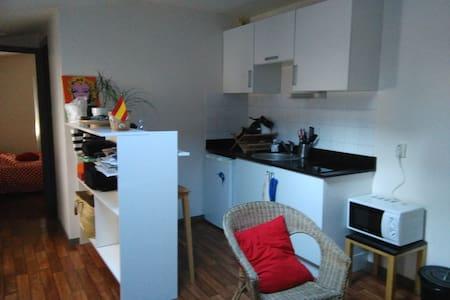 T2 en plein centre-ville de La Rochelle - La Rochelle - Appartement