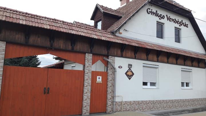 Ginkgo Gasthaus Demjen