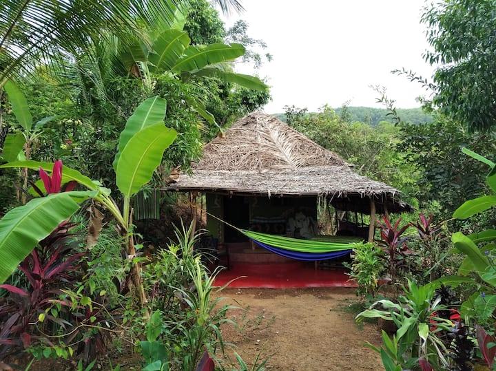 Paro House