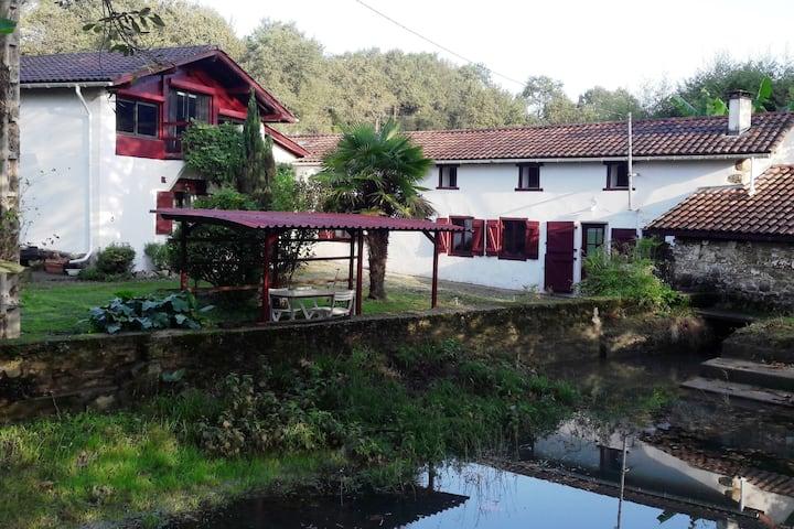 Ancien moulin rénové au cœur du Pays Basque