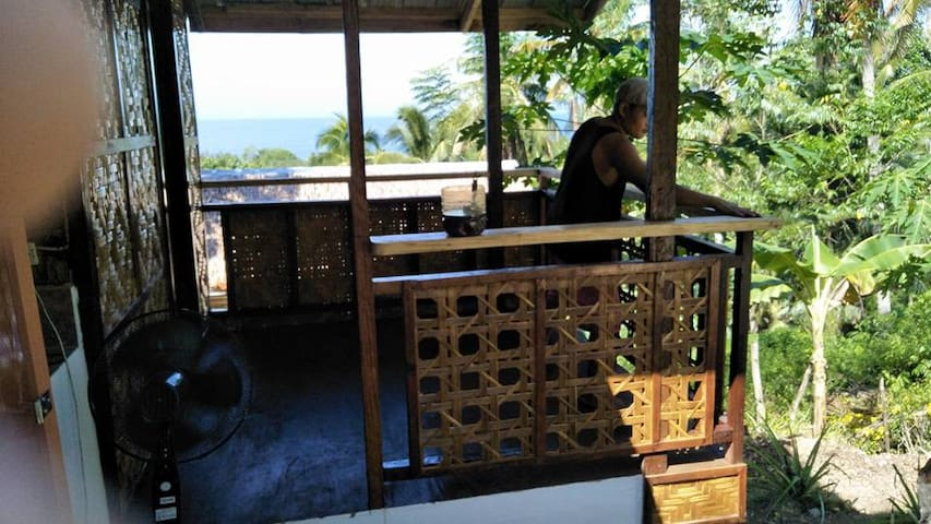 Samal Island nature cottage, Durian view