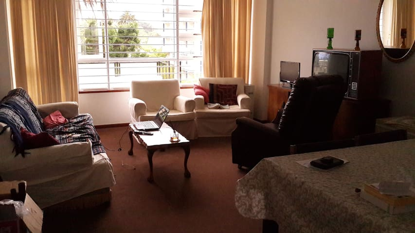 Comfortable spacious apartment near Table Mountain