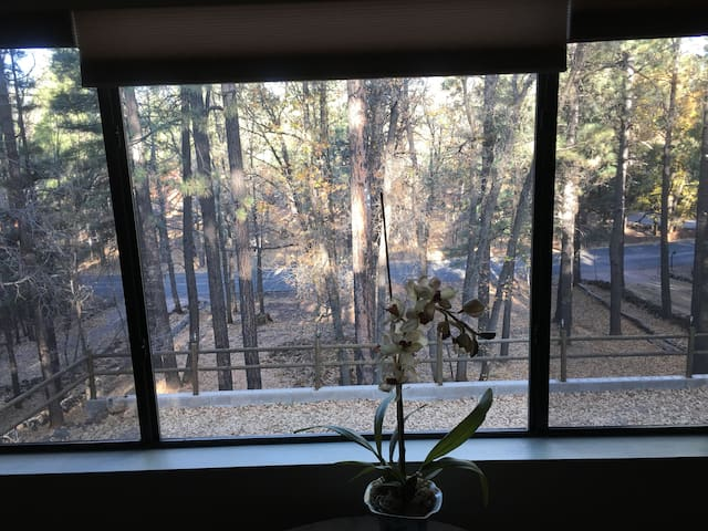 view out the master bedroom