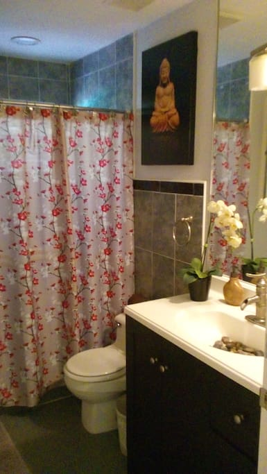Private Guest Bathroom (Stand Up Shower)