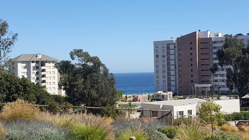 Depto Nuevo a pasos de la playa - Papudo - Квартира
