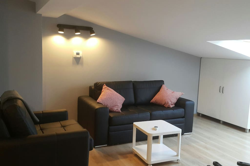 Bright and spacious studio flat. 180cm Sofa bed that can sleep up to 2 ppl