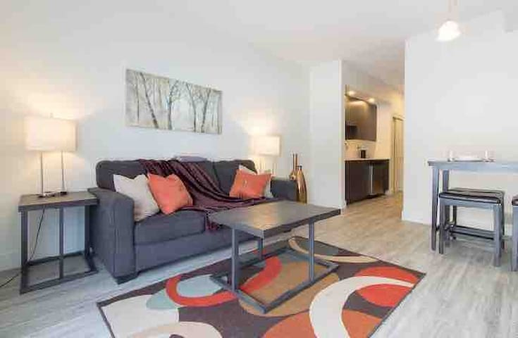 Brand New Condo- Steps to TD Place