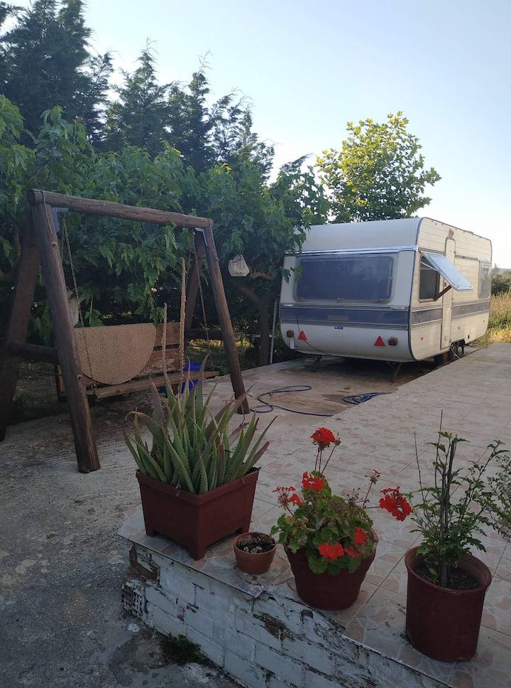 The Green Garden Caravan by Anna & Panagiotis