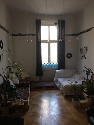 Private and super cozy room in central Vienna