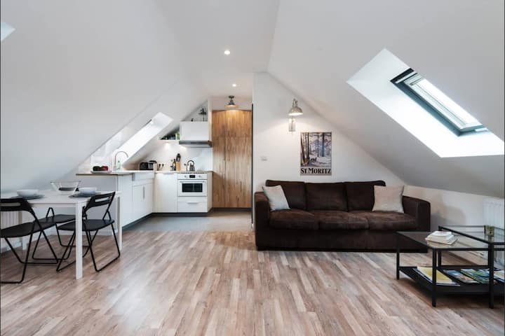 MODERN STUDIO AND COZY IN THE CENTER OF STRASBOURG