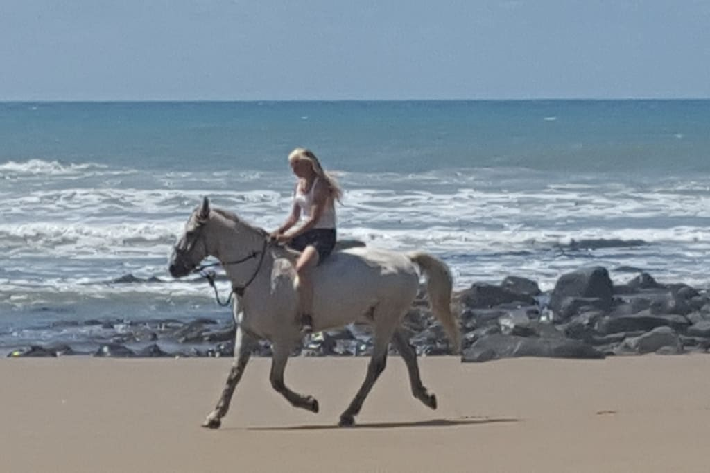 Horse riding on the beach!