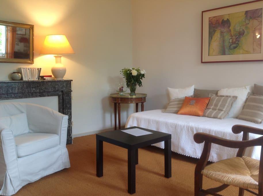 un séjour lumineux et confortable, cheminée ancienne en marbre
