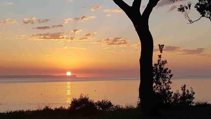 Sunrise Jervis Bay