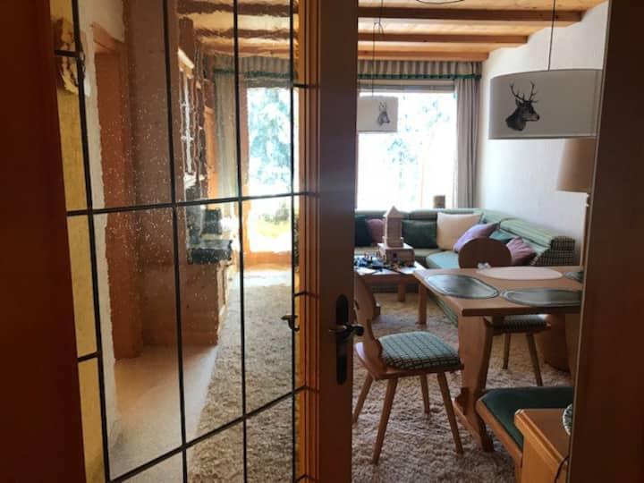 Sonnige, Huebsche 2-Zi Wohnung in Hinterthal