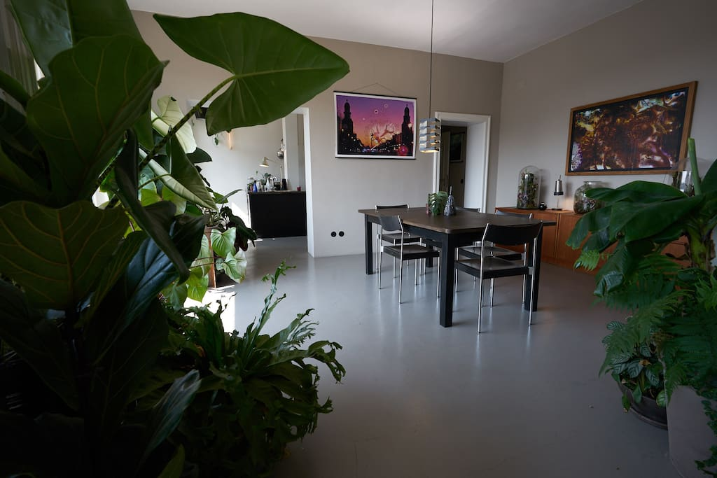 60m² connected living room, dining room and kitchen