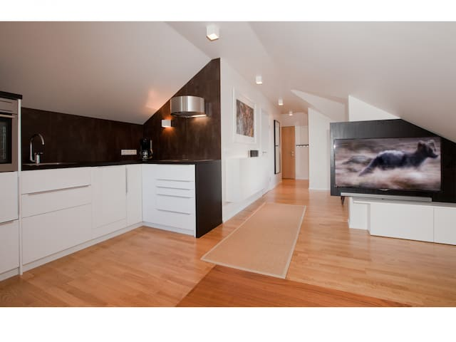 Two Bedroom Apartment (50 square meters)