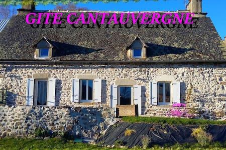 GITE AU COEUR DE L'AUVERGNE AVEC BALNEO ET SAUNA - Vebret - 独立屋