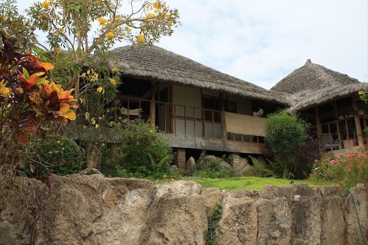 Muyuyo Lodge - Cardinal Ecocabin
