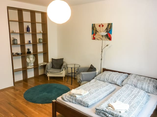 Near city center and main bus station apartment