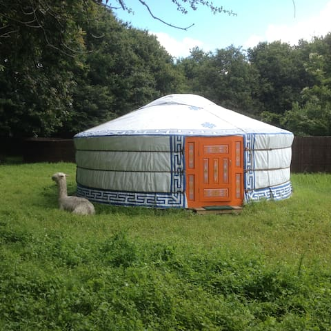 Yourte authentique - Herbignac - Yurt