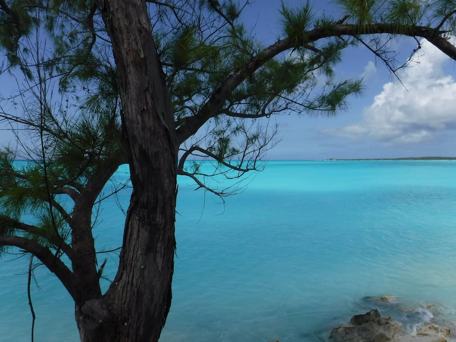 Enjoy magnificent Caribbean waters & whispering pines