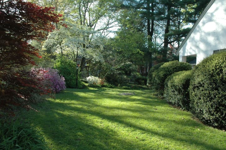 A springtime photo of the front yard, which was a pretty good place for croquet until the moles moved in.