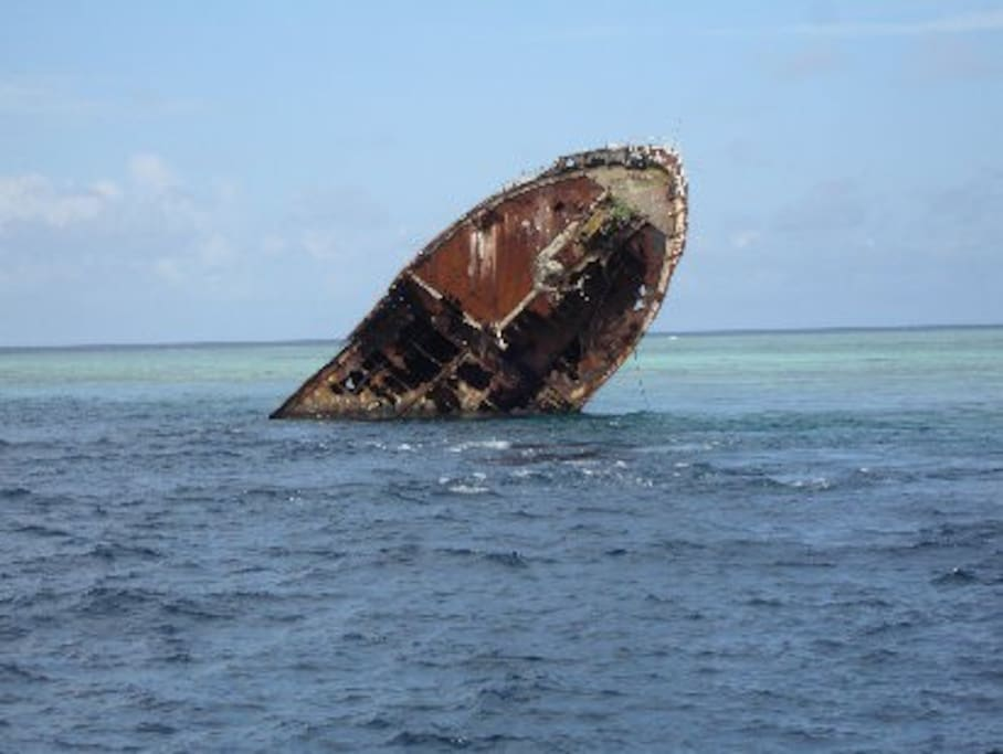 Shipwreck, diving point