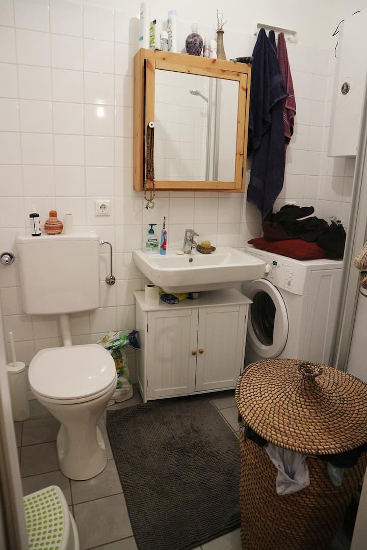 cosy apartment in Linz/Urfahr