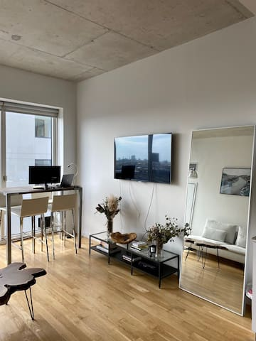 Large bright one-bedroom apartment