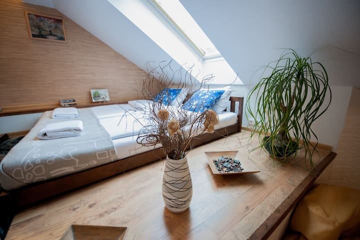 S 4 - Well designed, 50m2 Studio, Vilnius Old Town