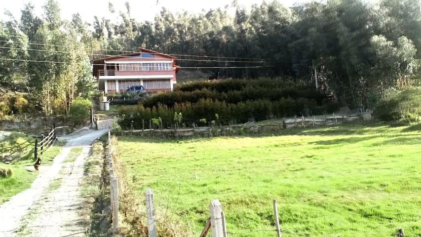 La cabaña está ubicada en una zona campestre .