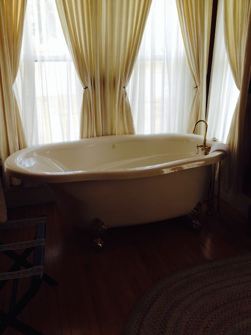 Claw Foot Jacuzzi Tub in the room