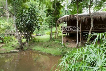 DreamCaught Treehouses - Villa