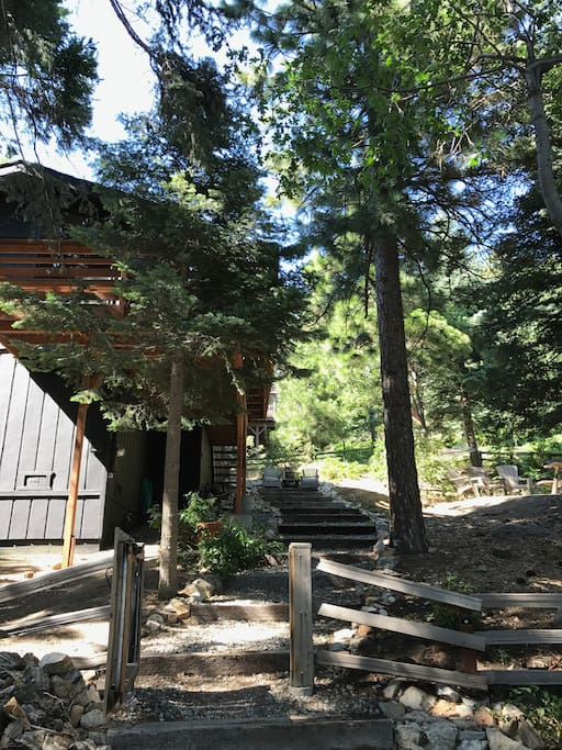 Path to the cabin