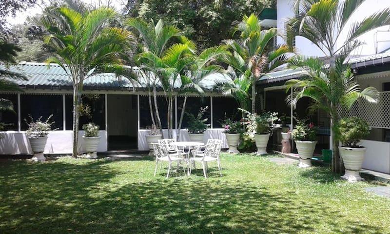 Lievi's Tourist Guesthouse Twin/triple AC room B&B