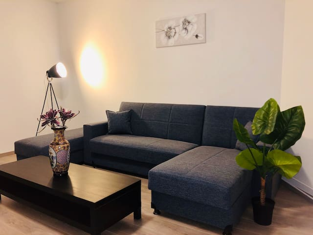 Brand new  and big appartement in Brussels  city