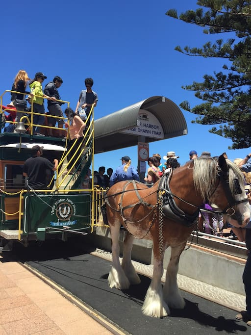 Walking distance to horse drawn tram and Granite Island