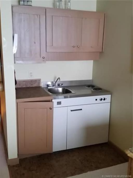 Small kitchen with 2 stove tops, sink, and small fridge with freezer