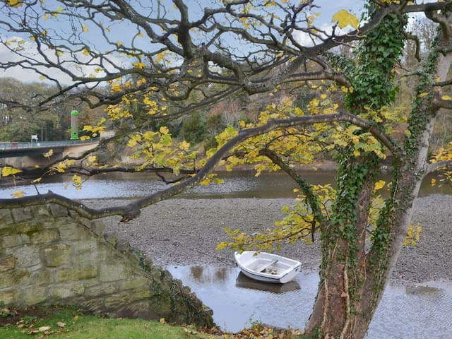 Old School on the River Coquet (UK3305)