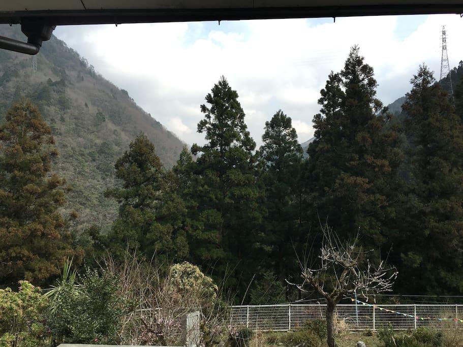 お部屋の入口からの景色 - the sight from the 204 room