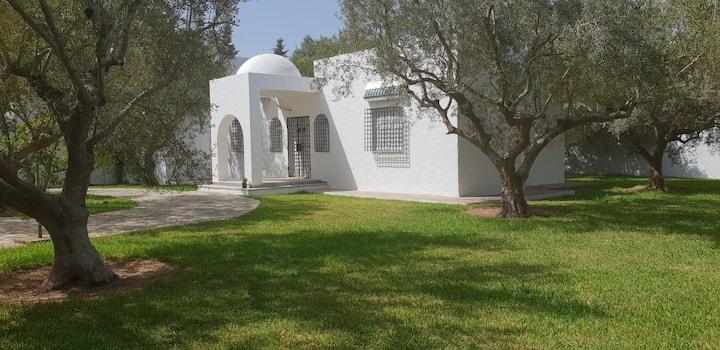 Villa DAR Hammamet