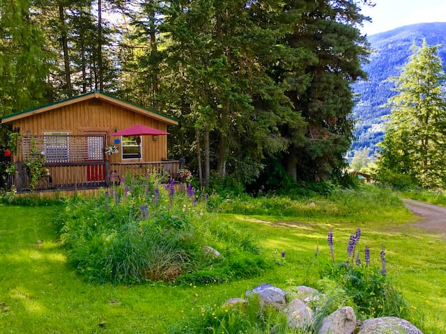 The Kootenay Cottage, pet friendly - Nelson - Hytte