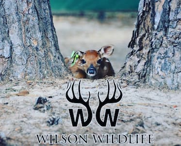Whitetail deer ranch retreat in East Texas!