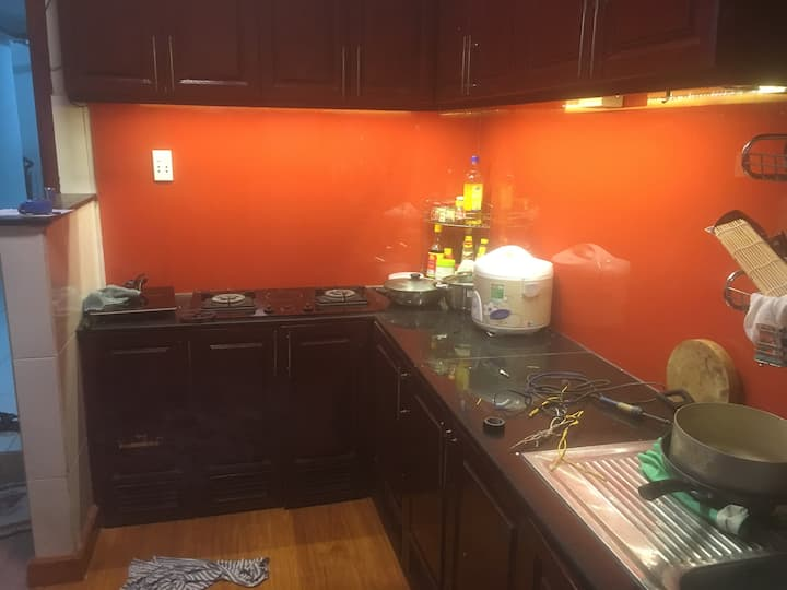Full apartment for family & business trip
