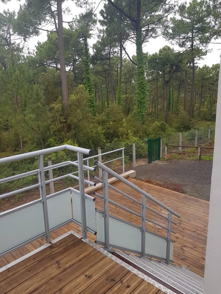 Logement vue forêt domaniale
