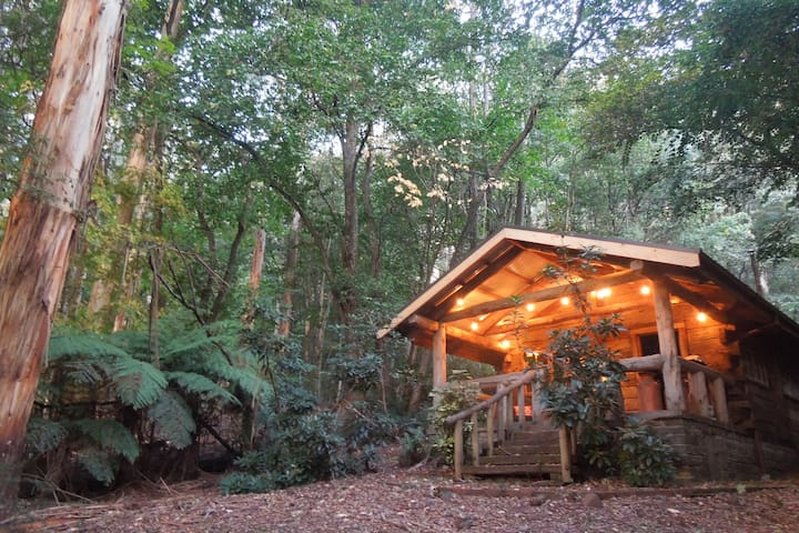 The simple life - artist's off-grid log cabin